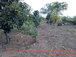 Cuiabá: VENDO!!! Um sítio de 15 hectares na estrada do Manso 58 km de asfalto + 21 de chão, 13