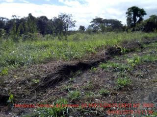 Cuiabá: VENDO!!! Um sítio de 15 hectares na estrada do Manso 58 km de asfalto + 21 de chão, 14