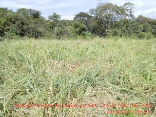 Cuiabá: VENDO!!! Um sítio de 15 hectares na estrada do Manso 58 km de asfalto + 21 de chão, 20