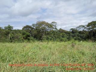 Cuiabá: VENDO!!! Um sítio de 15 hectares na estrada do Manso 58 km de asfalto + 21 de chão, 27