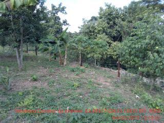 Cuiabá: VENDO!!! Um sítio de 15 hectares na estrada do Manso 58 km de asfalto + 21 de chão, 8