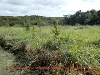 Cuiabá: VENDO!!! Um sítio de 15 hectares na estrada do Manso 58 km de asfalto + 21 de chão, 9
