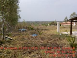Cuiabá: VENDO!!! Uma chácara com 2.81 hectares na região do bandeira 12 km de Cuiabá-MT, sendo 8 km de chão 16