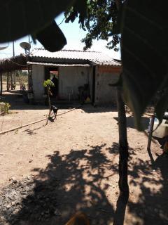 Cuiabá: VENDO!!! Um sítio com 29 hectares no assentamento Agro Ana na região do posto 120, sentido a cidade de Cáceres-MT. 11