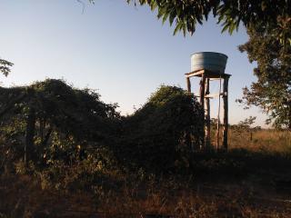 Cuiabá: VENDO!!! Um sítio com 29 hectares no assentamento Agro Ana na região do posto 120, sentido a cidade de Cáceres-MT. 14