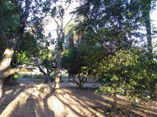 Cuiabá: VENDO!!! Um sítio com 29 hectares no assentamento Agro Ana na região do posto 120, sentido a cidade de Cáceres-MT. 18