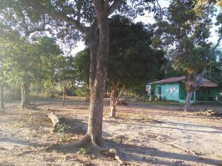 Cuiabá: VENDO!!! Um sítio com 29 hectares no assentamento Agro Ana na região do posto 120, sentido a cidade de Cáceres-MT. 6