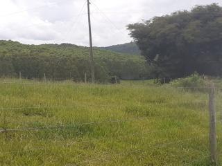 Baependi: Sitio para plantio ou criação de gado em Baependi-MG 10