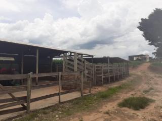 Baependi: Sitio para plantio ou criação de gado em Baependi-MG 12