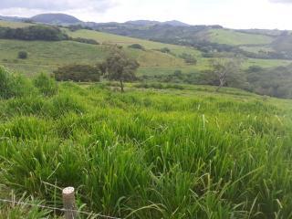 Baependi: Sitio para plantio ou criação de gado em Baependi-MG 6