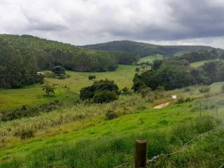 Baependi: Sitio para plantio ou criação de gado em Baependi-MG 7