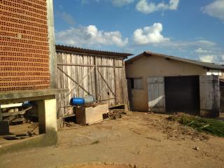 Baependi: Sitio muito agradável em Cruzília-MG 10