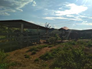 Baependi: Sitio muito agradável em Cruzília-MG 2