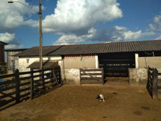Baependi: Sitio muito agradável em Cruzília-MG 3