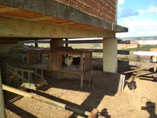 Baependi: Sitio muito agradável em Cruzília-MG 8
