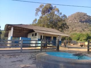 Baependi: Fazenda de 43 Hectares em Conceição 2