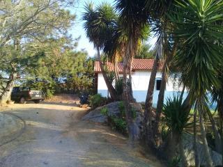 Baependi: Fazenda de 43 Hectares em Conceição 7
