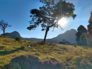 Baependi: Fazenda 64 Hectares á venda em Carvalhos-MG 15