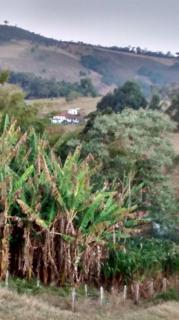 Baependi: Fazenda 64 Hectares á venda em Carvalhos-MG 17