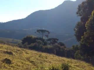 Baependi: Fazenda 64 Hectares á venda em Carvalhos-MG 19