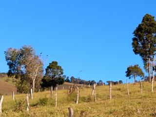 Baependi: Fazenda 64 Hectares á venda em Carvalhos-MG 21