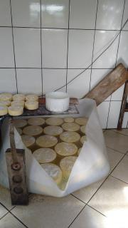 Baependi: Fazenda 64 Hectares á venda em Carvalhos-MG 7