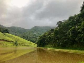 Rio de Janeiro: Fazenda / Sítio à venda em Secretário, Petrópolis - RJ 13