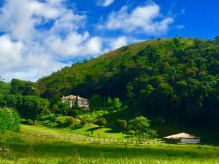 Rio de Janeiro: Fazenda / Sítio à venda em Secretário, Petrópolis - RJ 26