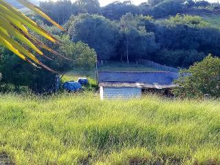 Baependi: Chácara de 4 Hectares em Cruzília MG 2