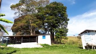 Baependi: Fazenda Em 57 Hectares Caxambu-MG 9