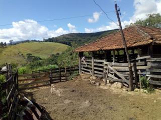 Baependi: Sitio em Baependi/MG de 62 Hectares 4