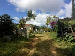Baependi: Sitio em Baependi/MG de 62 Hectares 5