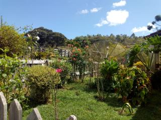 Baependi: Sitio em Baependi/MG de 62 Hectares 6