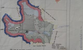 Baependi: Sitio de 22.8 Hectares em Baependi-MG 11