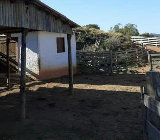 Baependi: Sitio de 10 Alqueires em Cruzília/MG 16
