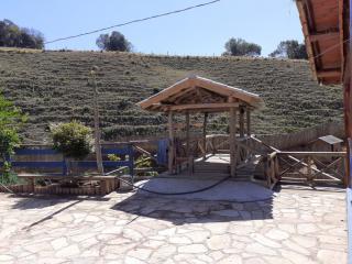 Baependi: Sitio de 10 Alqueires em Cruzília/MG 9