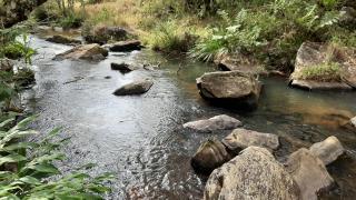 Baependi: Fazenda de 100 Hect. em Aiuruoca/MG 6