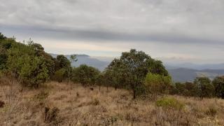Baependi: Fazenda de 100 Hect. em Aiuruoca/MG 8