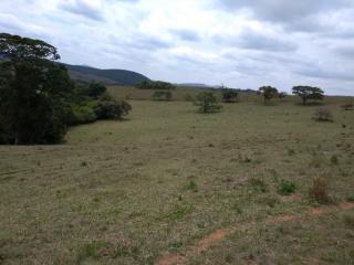 Baependi: Sitio de 113 Hectares em Aiuruoca/MG 1