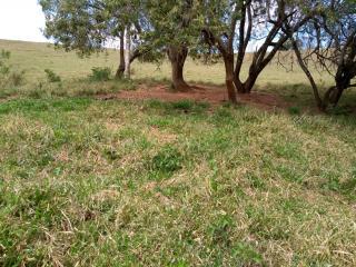 Baependi: Sitio de 113 Hectares em Aiuruoca/MG 2
