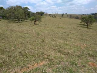 Baependi: Sitio de 113 Hectares em Aiuruoca/MG 6