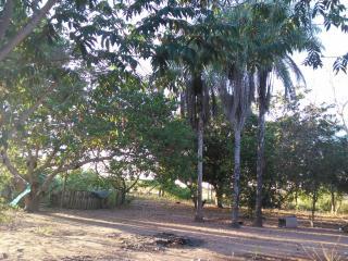 Cuiabá: VENDO!!! Uma área rural sítio com 29 hectares no assentamento Agro Ana na região do posto 120, sentido a cidade de Cáceres-MT 15