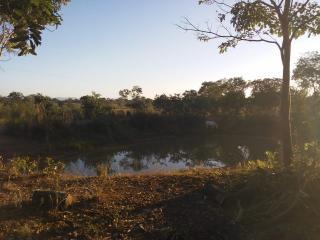 Cuiabá: VENDO!!! Uma área rural sítio com 29 hectares no assentamento Agro Ana na região do posto 120, sentido a cidade de Cáceres-MT 16