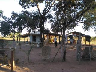 Cuiabá: VENDO!!! Uma área rural sítio com 29 hectares no assentamento Agro Ana na região do posto 120, sentido a cidade de Cáceres-MT 6