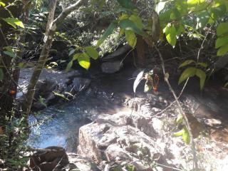 Cuiabá: VENDO!!! um sítio de 16.54 hectares na região do manso no porto de cima com 89 metros margeando o rio manso 12