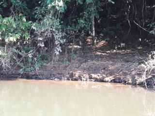 Cuiabá: VENDO!!! um sítio de 16.54 hectares na região do manso no porto de cima com 89 metros margeando o rio manso 3