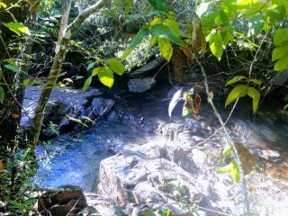 Cuiabá: VENDO!!! um sítio de 16.54 hectares na região do manso no porto de cima com 89 metros margeando o rio manso 5