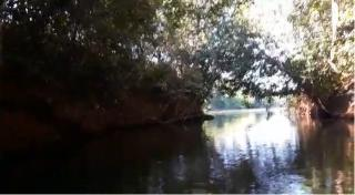Cuiabá: VENDO!!! um sítio de 16.54 hectares na região do manso no porto de cima com 89 metros margeando o rio manso 8