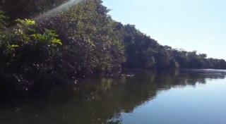 Cuiabá: VENDO!!! um sítio de 16.54 hectares na região do manso no porto de cima com 89 metros margeando o rio manso 9