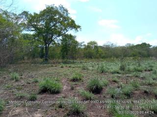 Cuiabá: VENDO!!! Um sítio de 33 hectares na região da sadia 3 a 50 km do trevo do lagarto 18